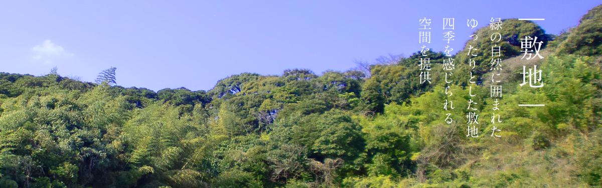 |敷地|緑の市善意囲まれたゆったりとした敷地。四季を感じられる空間を提供。